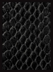 Koszulki Legion New Dragon Hide Black - Standard (50szt)