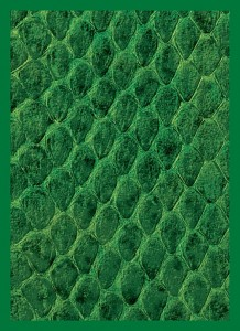 Koszulki Legion New Dragon Hide Green - Standard (50szt)